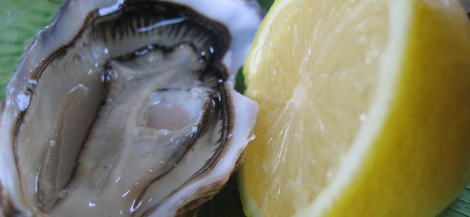 Régalez vous avec nos produits de la mer sur Oléron