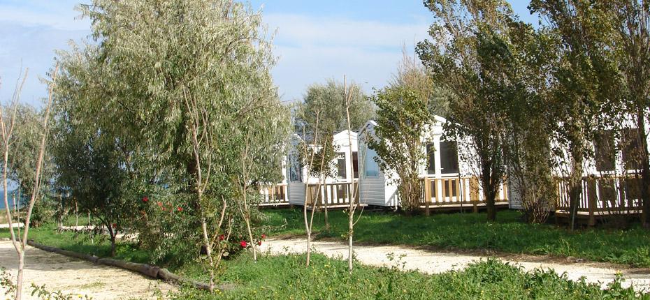 location de mobil home ile d 39 ol ron camping phare ouest bord de mer saint denis. Black Bedroom Furniture Sets. Home Design Ideas