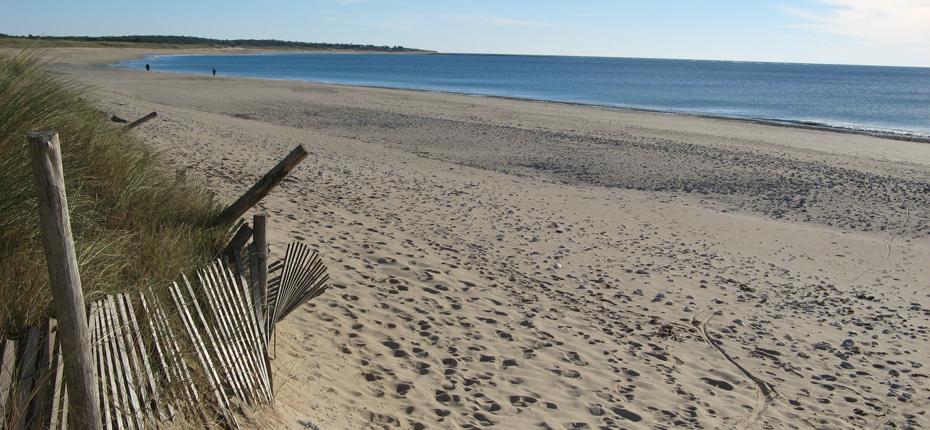 Appréciez la plage de Saint Denis d'Oléron