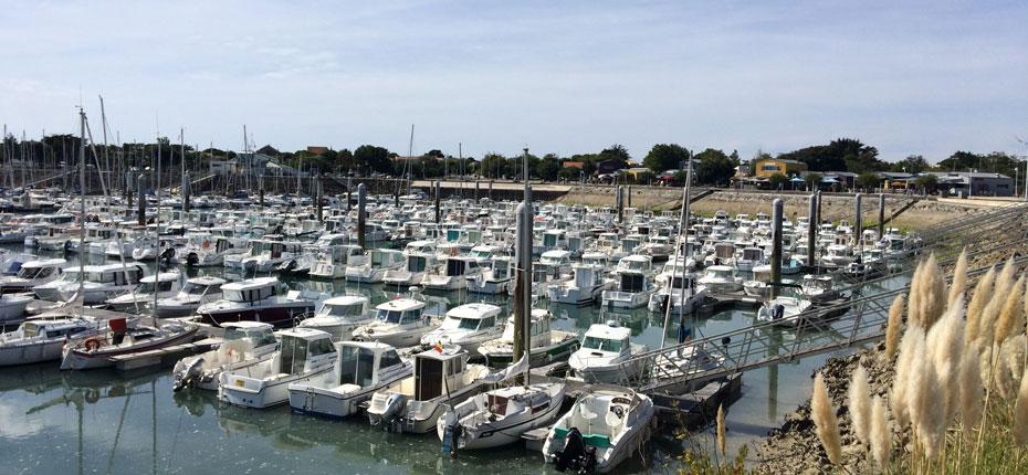 Découvrez les commerces du port plaisance de Saint Denis d'Oléron